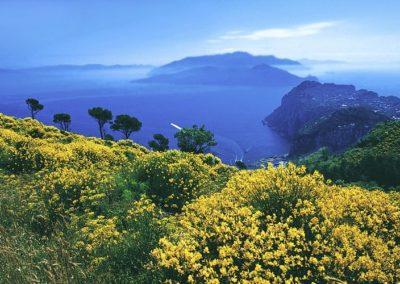 Vacanza a Capri
